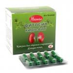 Фитосил Кидо-Фит, капсулы на растительной основе, для здоровья почек